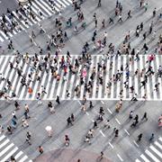 Change Management in Unternehmen und Organisationen