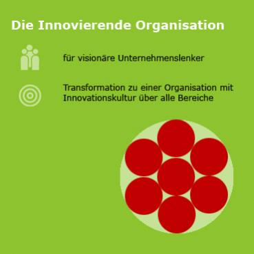 Infografik mit Text: Design Thinking für die Innovierende Organisation und für visionäre Unternehmenslenker. Transformation zu einer Organisation mit Innovationskultur über alle Bereiche.