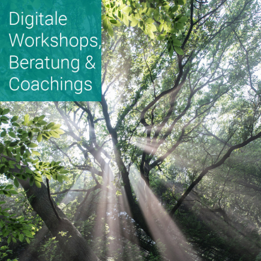 Digitale Workshopmoderation, Beratung und Business Coaching