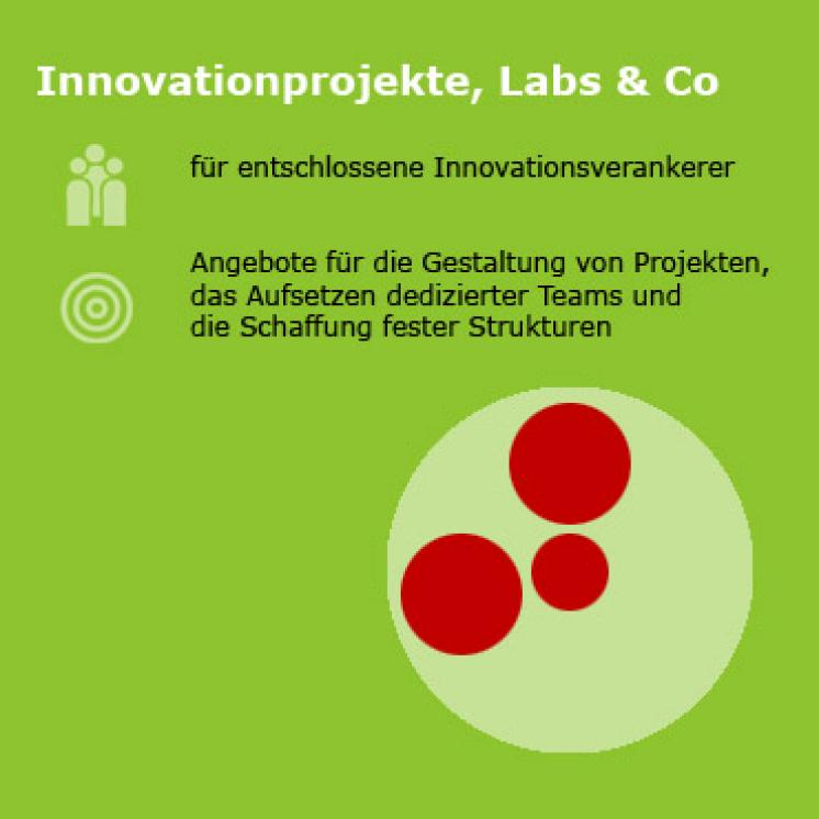 Infografik mit Text: Design Thinking Innovationsprojekte, Labs & Co für entschlossene Innovationsverankerer. Ein Angebot für die Gestaltung von Projekten, das Aufsetzen dedizierter Teams und die Schaffung fester Strukturen.
